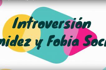Introversión, timidez y fobia social